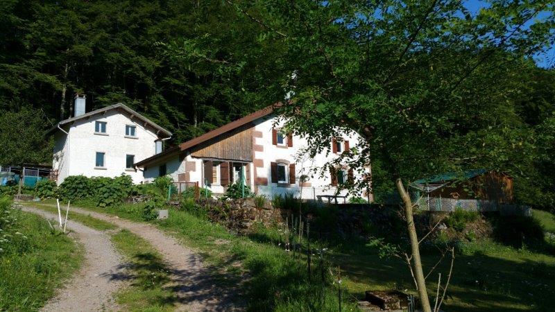 Rustig gelegen gerenoveerde boerderij met prachtige authentieke details met mogelijkheid tot gite of chambres d'hôtes. De boerderij heeft een schitterend uitzicht. U kunt zo het bos in wandelen vanaf het terrein.